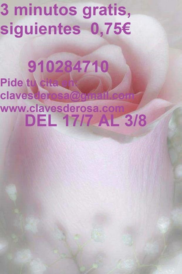 27720921_10215275696146961_535183130_n